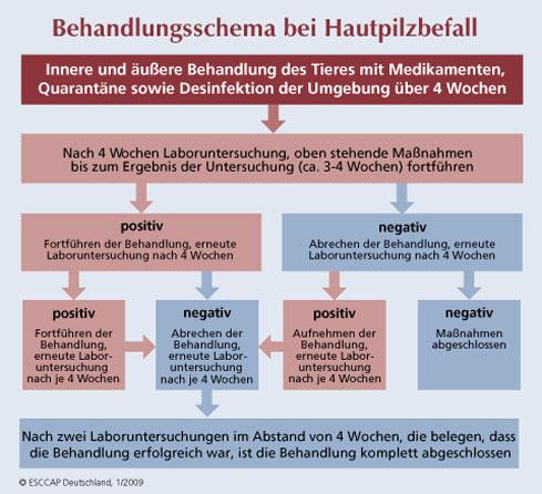 Ansteckend leistenpilz Hautpilz: Symptome