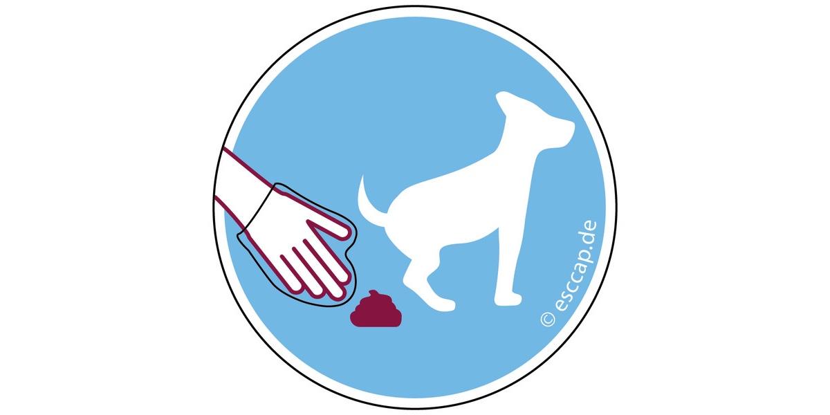 Blau-weiße Abbildung: Hand mit Handschuh nimmt Kot vom Hund auf.