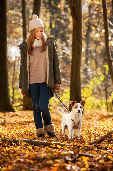 Frau geht mit Hund an Leine spatzieren im herbstlichen Wald
