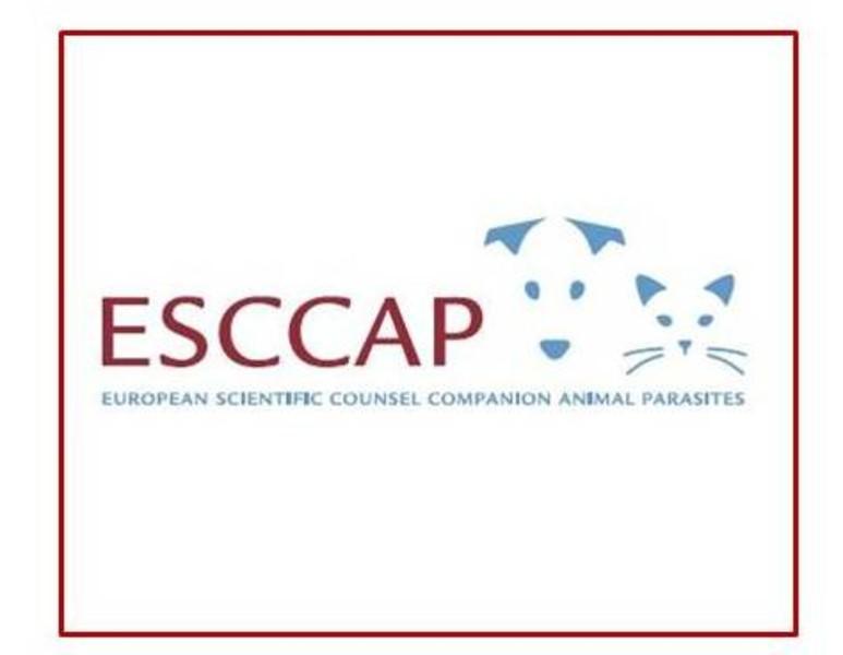 ESCCAP Logo