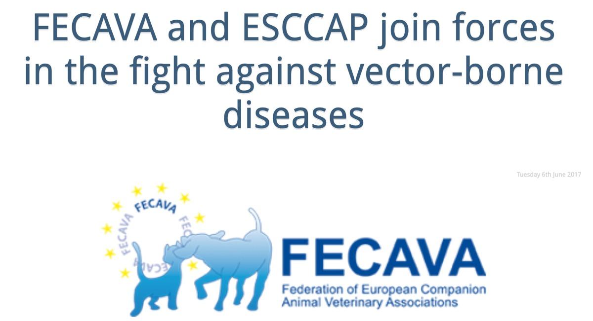 Abbildung FECAVA und ESCCAP